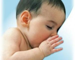 menyusui bayi
