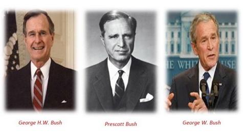 trio-bush